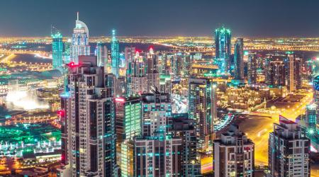 Increases in Dubai business licences in 2009